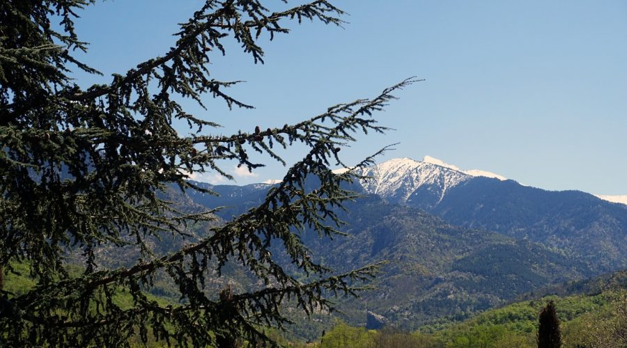 Camping L'air Marin : Pyrennees